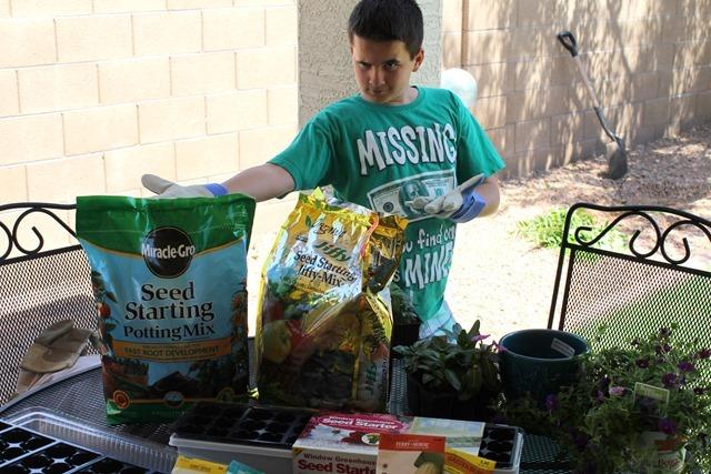 seedling kit 042