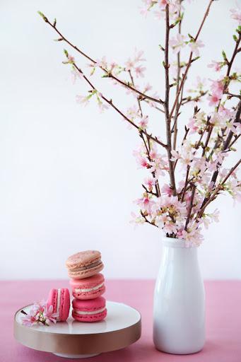 spring wedding decoration