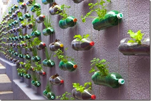 reciclar huerto urbano (3)