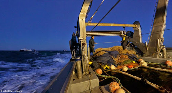 Pesca de la gamba de Tarragona.Tarragona, Tarragonès, Tarragona