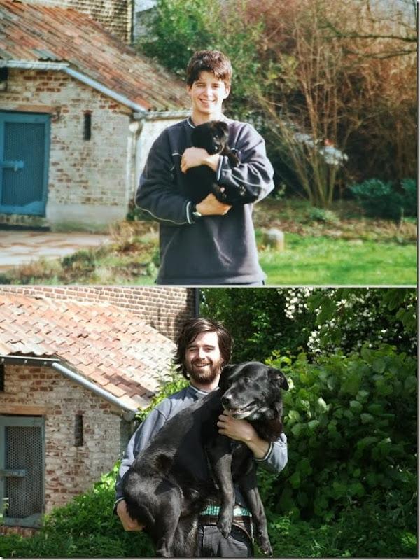 Antes e Depois de Animais de Estimação (21)