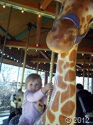 Nov zoo day  (3)