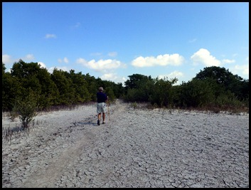 15 - approaching Snake Bight throught the Mangroves