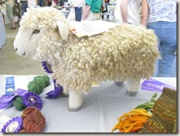 skein_and_garment_sheep