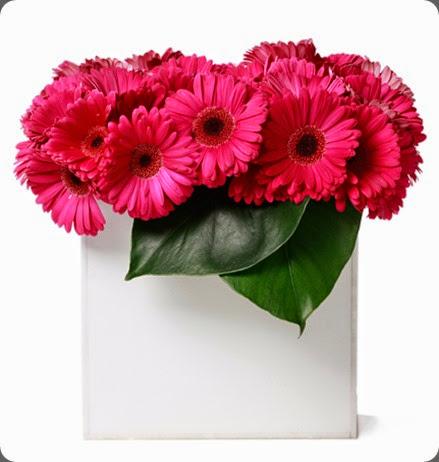 gerberas FA68_500x500 floral art