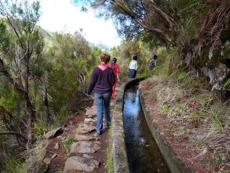 Revelion 2014:  Levadas, apeducte in Madeira