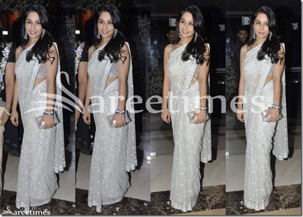 White_Embroidery_Net_Saree