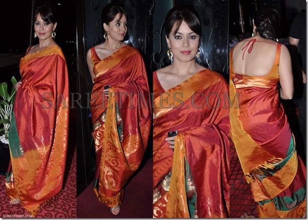Mahima_Chaudhary_Silk_Saree