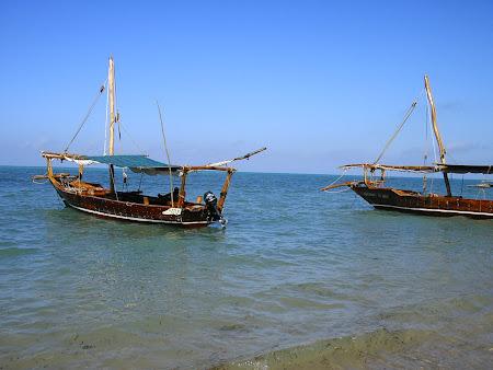 Excursii Zanzibar: Barca de Safari Blue
