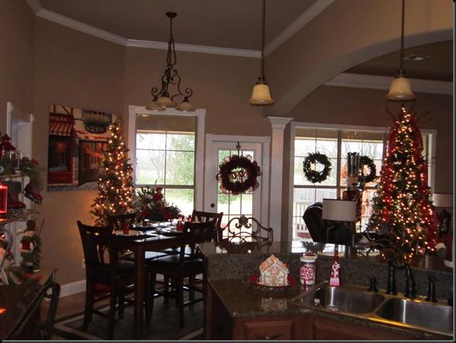 Christmas 2011 266