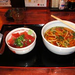 udon and tuna sashimi in shizuoka japan in Shizuoka, Sizuoka (Shizuoka) , Japan