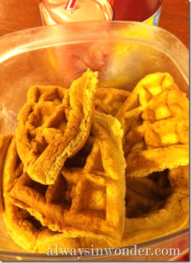 leftover_waffles_from_alwaysinwonder.com