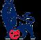 Jadwal Liga Inggris Sabtu 19 Januari 2013