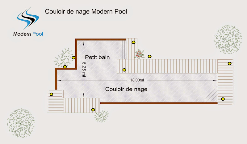 les diff rentes formes piscine bois modern pool france. Black Bedroom Furniture Sets. Home Design Ideas