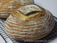 tartine-country-bread 083