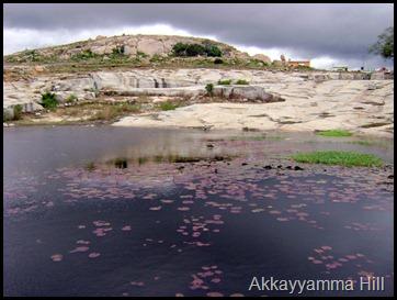 Akkayyamma Hill