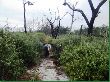 Pat's Island Trail 093