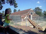 Feeding the giraffes at the Metro Richmond Zoo! (September)