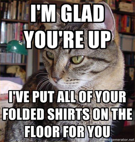 I'm Glad You're Up. I've put all of your folded shirts on the floor for you.