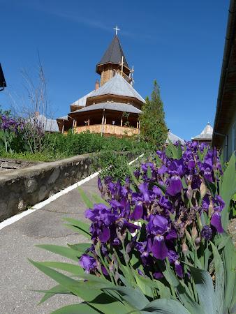 Imagini Romania: Manastirea Sf Ana Orsova
