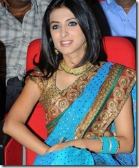 simer_motani_cute_in_saree_still