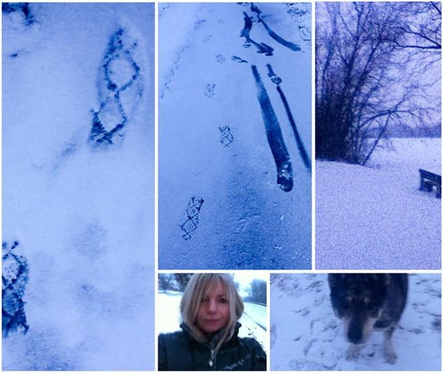 winter-1LR
