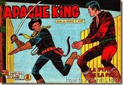 P00029 - Apache King  - A.Guerrero