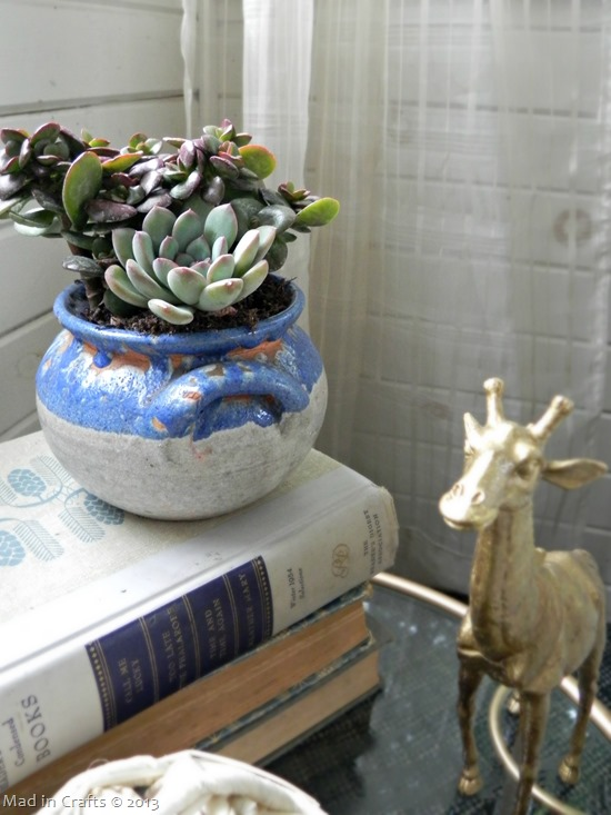 succulents in a crock
