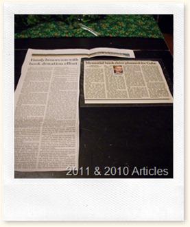 2011 & 2010 Journal Articles (Medium)