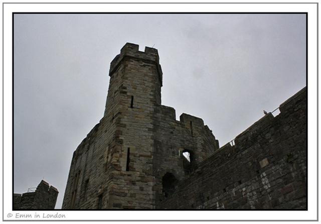 Approaching Caernarfon Castle