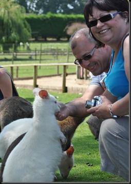 Steve & Sharon feeding Wallabies DSC_1020