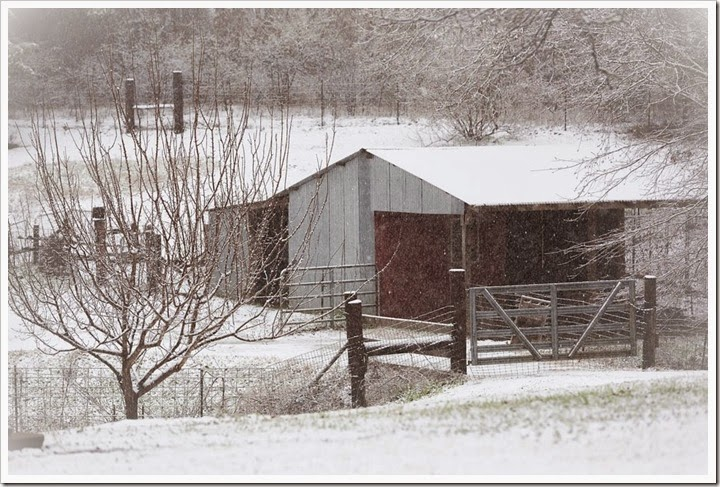 snow-2-25-15-1-2FB