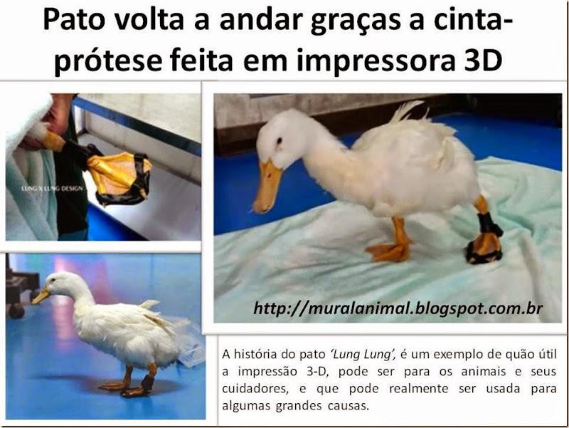 pato-cinta-protese