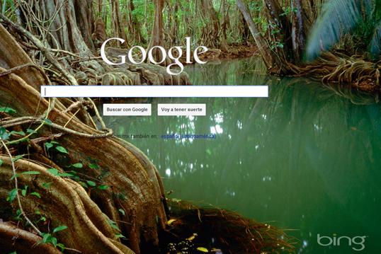 GoogleBing