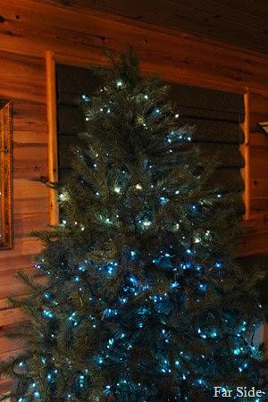 Tree December 12