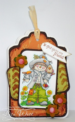 CD Scarecrow and Friend (3)