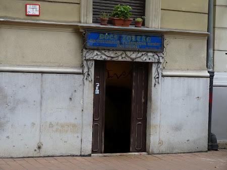 Imagini Budapesta: intrare in fierarie