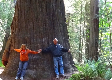 Not nearly as big as theSequoia.