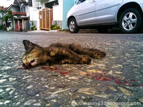 10262011(003)Asiong32