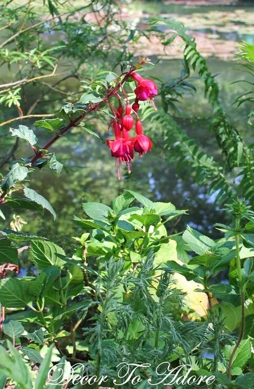 Monet's Garden 090