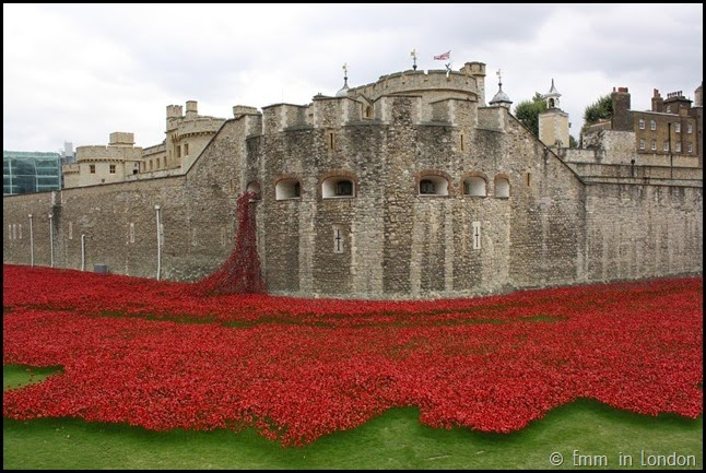The outer Tower and the poppies