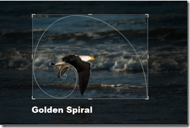 golden spiral cropping overlay in lightroom
