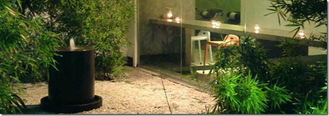 the tranquil garden (1)