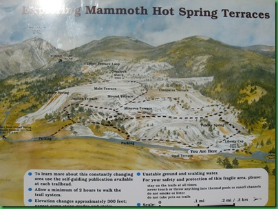 Mammoth Hot Springs Terraces (8)