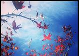 IMG_20131103_093713.jpg