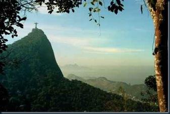 Floresta da Tijuca5
