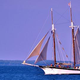 Afternoon Light by Tim Hall - Transportation Boats ( age of sail, michigan, under way, afternoon, grand traverse bay, great lakes, sailboat, foresail, under sail, schooner, sailing ship )
