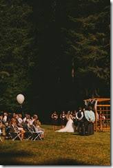 wedding pro 36