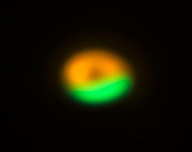 imagens do ALMA e do VLT da fábrica de cometas
