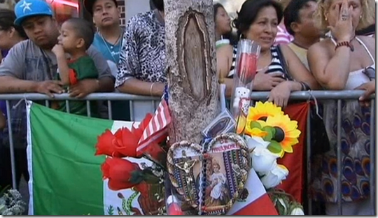 Virgin Mary image on tree in New Jersey  Crowds say yes   U.S. Newsnnnn